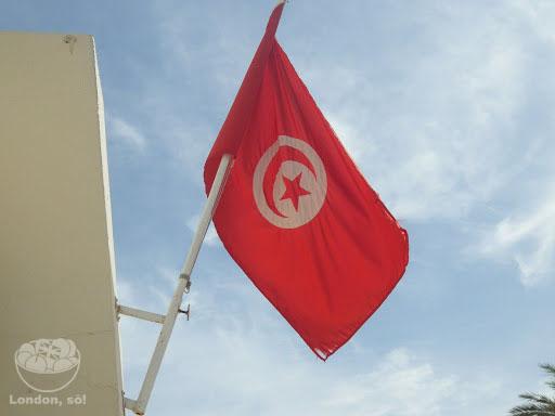 bandeira-tunisia