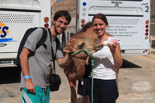 Eu e o André dando mamadeira pra um camelo fofo!