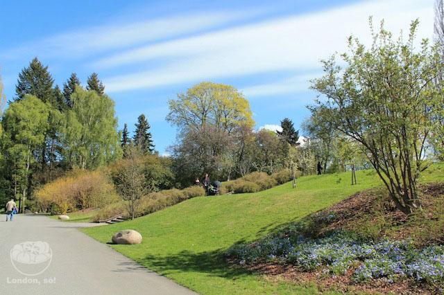 Jardim Botânico e um céu que parecia de mentira.