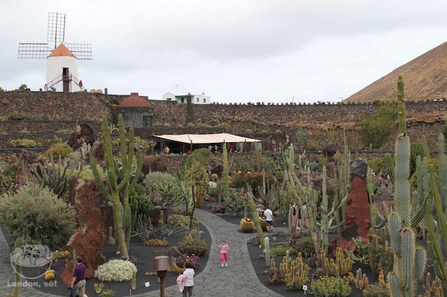 A primeira vista na entrada do Jardin de Cactus centros turisticos de lanzarote