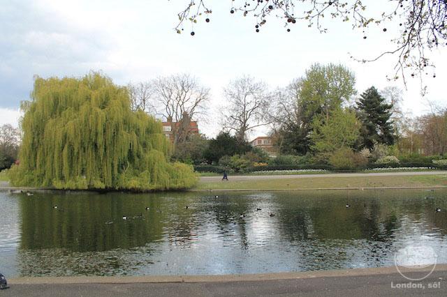 Regent's Park: Lindo até mesmo sem ser Primavera.
