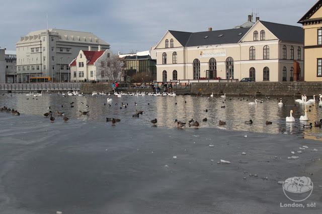 O que Fazer em Reykjavik