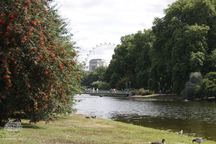 St James's Park num lindo dia de Primavera.