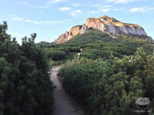 O Encontro Entre Uma Sedentária e Uma Montanha no Interior da Romênia