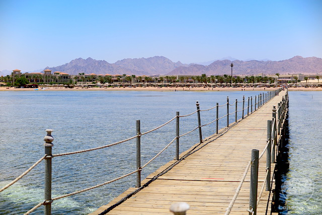 Nabq Bay em Sharm el Sheikh, Egito