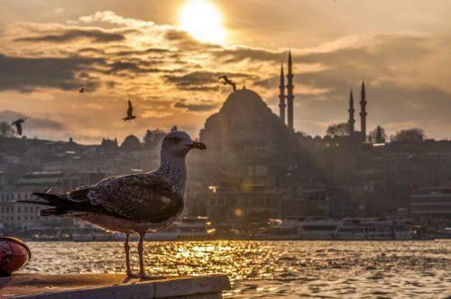 Montando o roteiro: Natal em Istambul e Capadócia