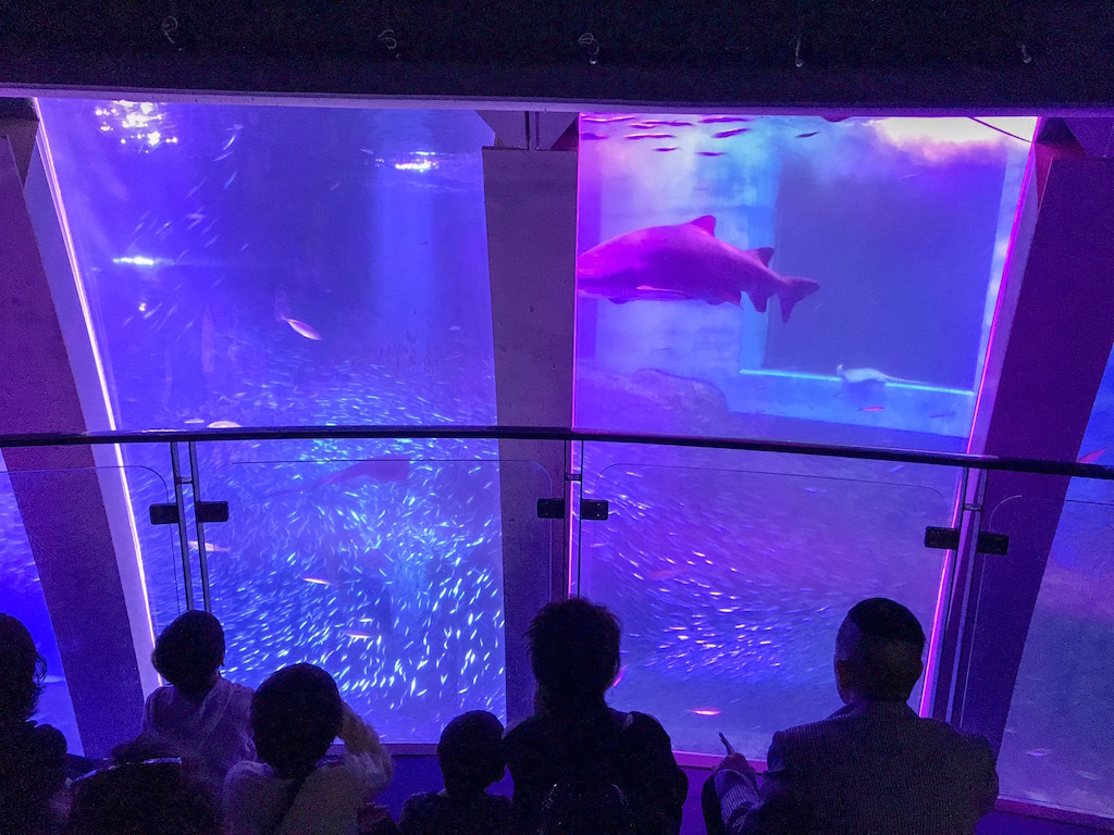 Hakkeijima Sea Paradise em Yokohama